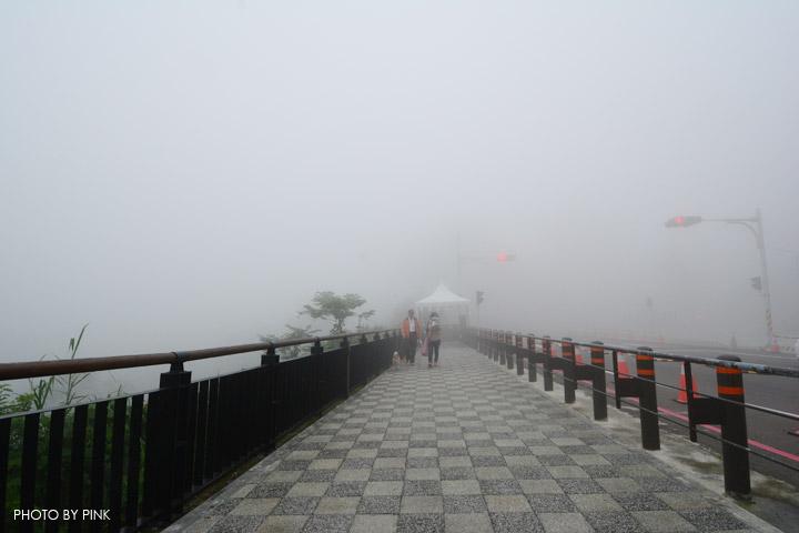 【嘉義梅山景點】太平雲梯景觀吊橋。全台最高景觀吊橋,走在雲梯,雲霧圍繞,猶如仙境!-DSC_5457.jpg