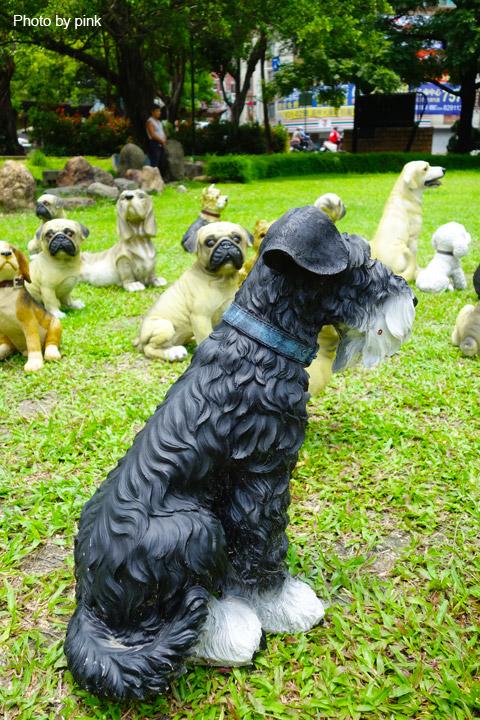 【員林新景點】員林公園出現新嬌客,四十多隻旺星人出沒,這是怎麼回事!?-DSC05482.jpg