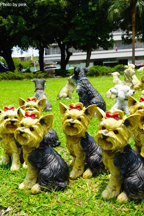 【員林新景點】員林公園出現新嬌客,四十多隻旺星人出沒,這是怎麼回事!?-DSC05497.jpg