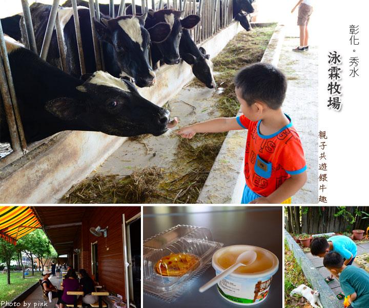 【彰化秀水景點】泳霖牧場。小規模牧場、品嚐牛乳製品、餵食小牛體驗,親子同遊好去處!-1.jpg