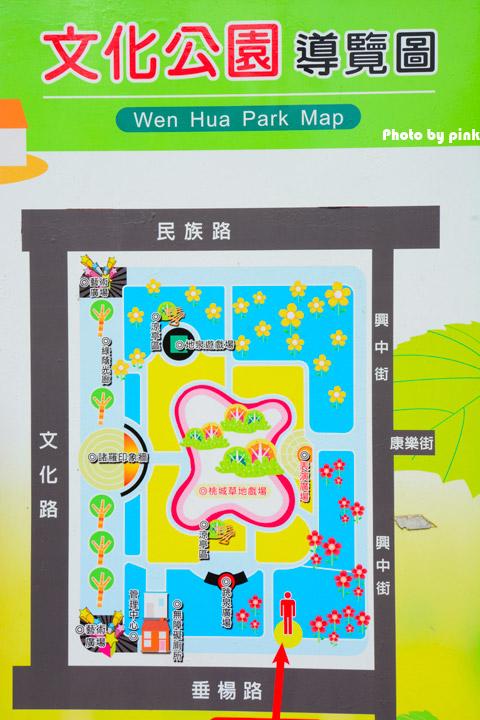 【嘉義市景點】文化公園。樹蛙成長日記為主題的共融式遊戲場,豐富有趣又好玩!-DSC_9048.jpg