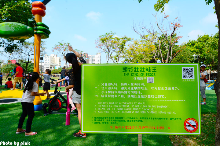 【嘉義市景點】文化公園。樹蛙成長日記為主題的共融式遊戲場,豐富有趣又好玩!-DSC_9068.jpg