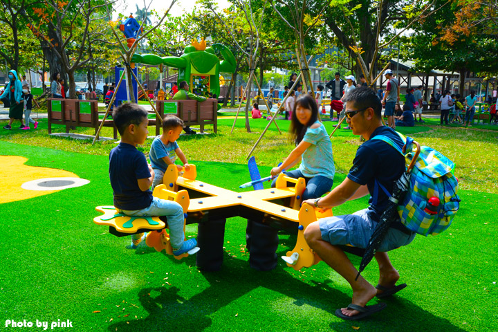 【嘉義市景點】文化公園。樹蛙成長日記為主題的共融式遊戲場,豐富有趣又好玩!-DSC_9085.jpg