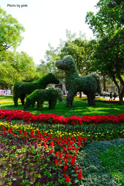 【2018台中花博】后里馬場園區。馬場結合花卉,如同一座花馬樂園,讓人驚豔!-DSC_0410.jpg