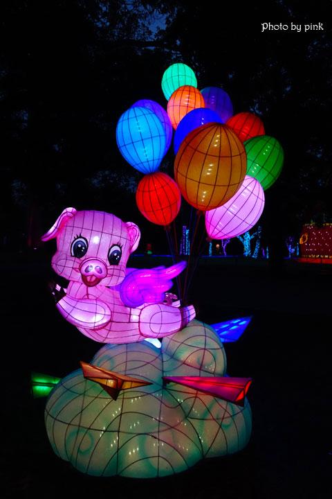 【2019南投市燈會】金豬賀歲來報喜,藍色燈海浪漫極緻,就在中山公園!-DSC03989.jpg