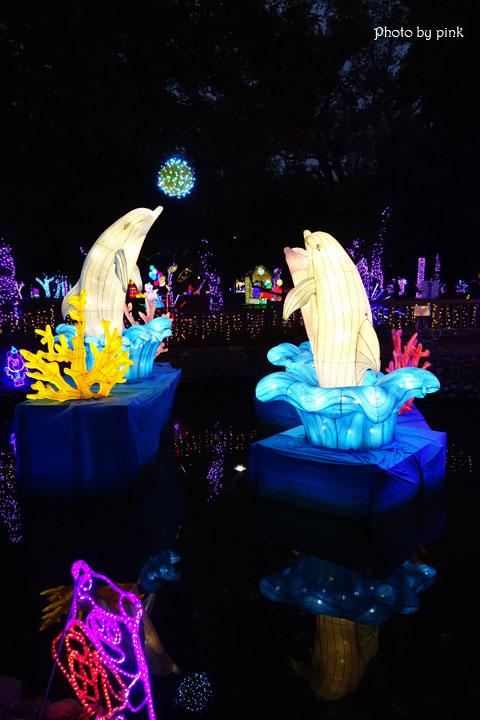 【2019南投市燈會】金豬賀歲來報喜,藍色燈海浪漫極緻,就在中山公園!-DSC04028.jpg