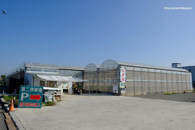 536無毒農園-DSCF6875.jpg