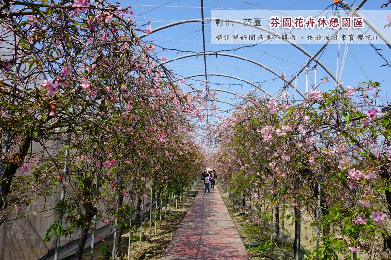 芬園花卉休憩園區-1.jpg