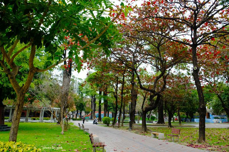 英才公園-DSCF7302.jpg