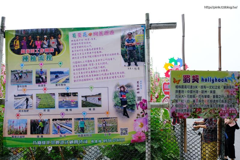 2020員林蜀葵花海-DSCF0048.jpg