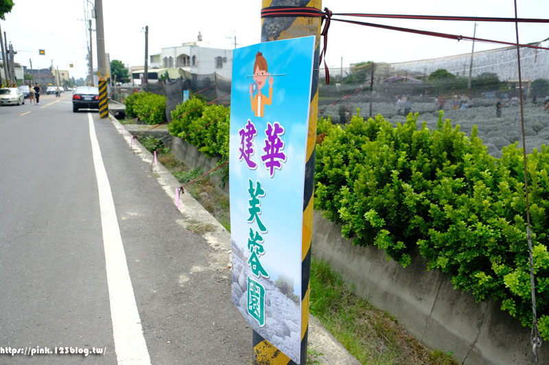 建華芙蓉園(雪白波波草)-DSCF1056.jpg