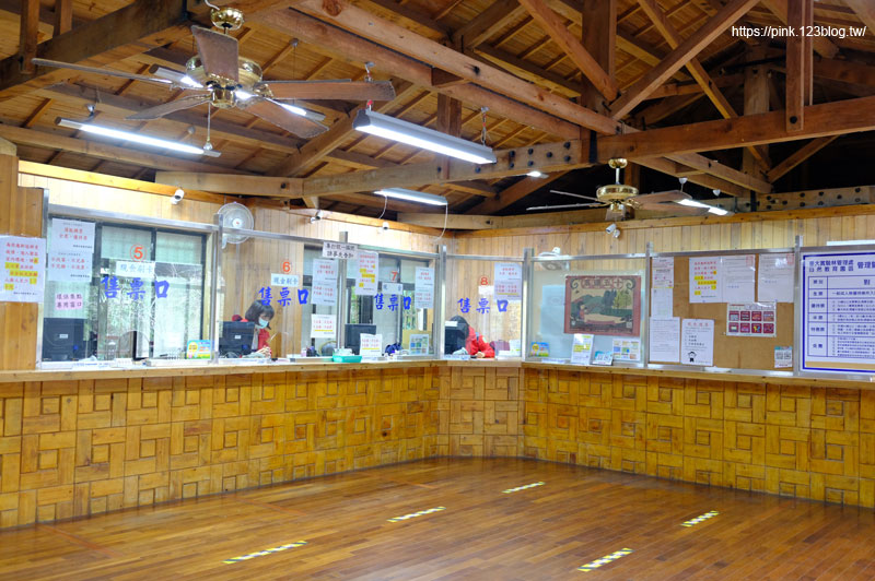 溪頭自然教育園區-DSCF4426.jpg
