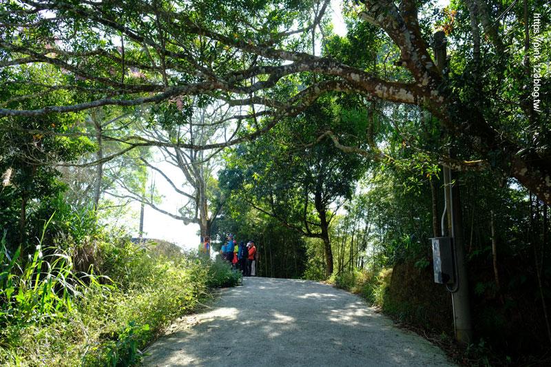 梅山二尖山步道-DSCF5619.jpg