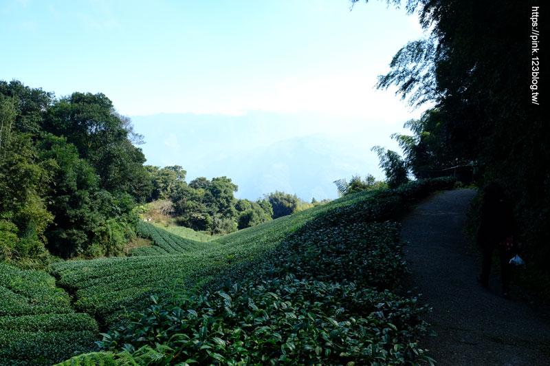 梅山二尖山步道-DSCF5623.jpg