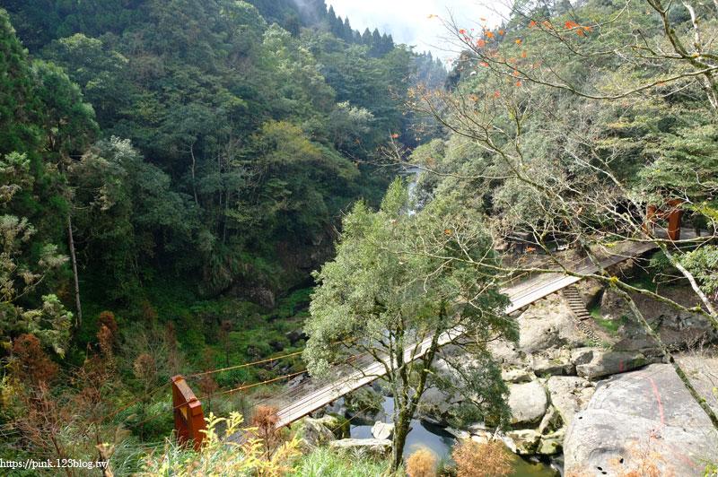 杉林溪森林生態渡假園區-DSCF5824.jpg