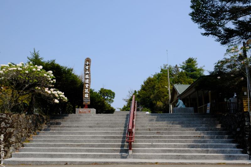 大雪山國家森林遊樂區-DSCF9320.jpg