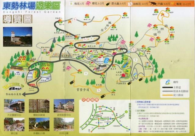 東勢林場櫻花dm1.jpg