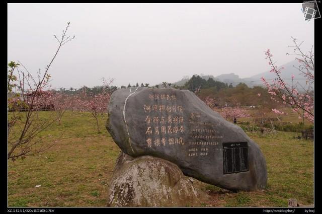 石馬公園櫻花166562_459744704073952_1127261391_n.jpg