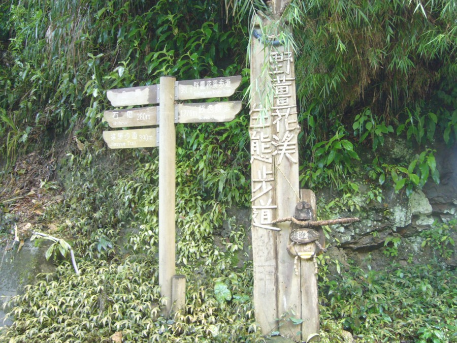 野薑花溪步道-1